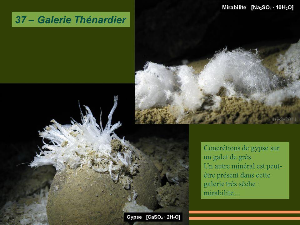 16-8-2011 37 – Galerie Thénardier Concrétions de gypse sur un galet de grès.
