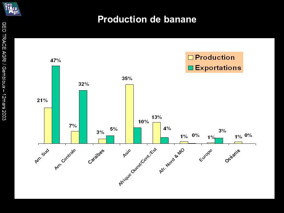 Production de banane GEO TRACE AGRI / Gembloux – 12mars 2003