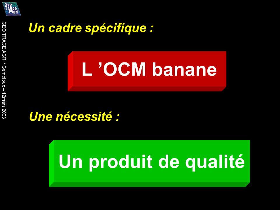 Un cadre spécifique : Une nécessité : L OCM banane Un produit de qualité GEO TRACE AGRI / Gembloux – 12mars 2003