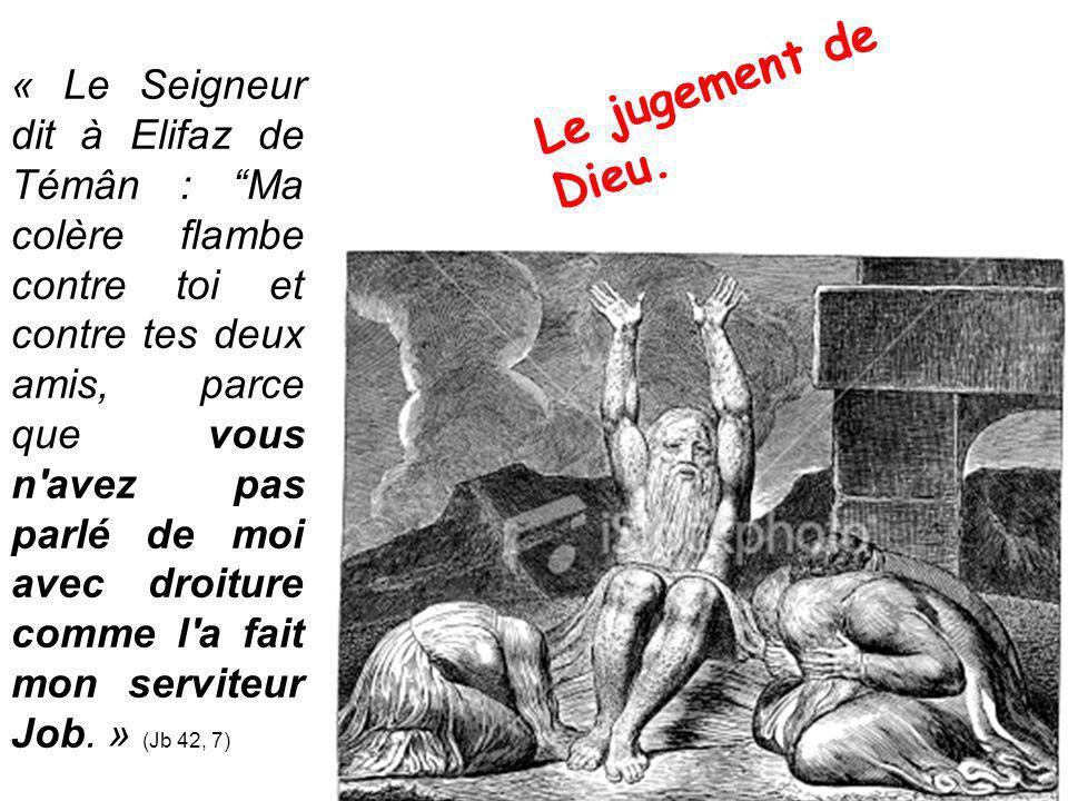« Le Seigneur dit à Elifaz de Témân : Ma colère flambe contre toi et contre tes deux amis, parce que vous n avez pas parlé de moi avec droiture comme l a fait mon serviteur Job.