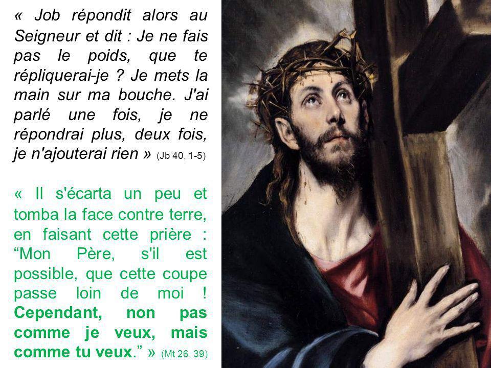 « Job répondit alors au Seigneur et dit : Je ne fais pas le poids, que te répliquerai-je .