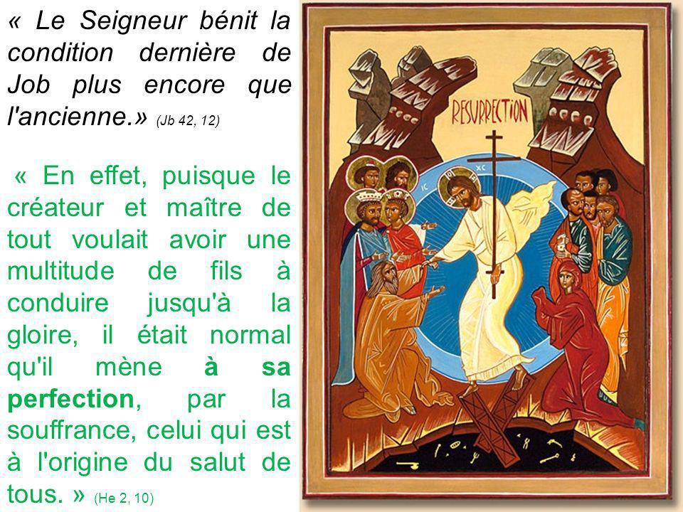 « Le Seigneur bénit la condition dernière de Job plus encore que l ancienne.» (Jb 42, 12) « En effet, puisque le créateur et maître de tout voulait avoir une multitude de fils à conduire jusqu à la gloire, il était normal qu il mène à sa perfection, par la souffrance, celui qui est à l origine du salut de tous.