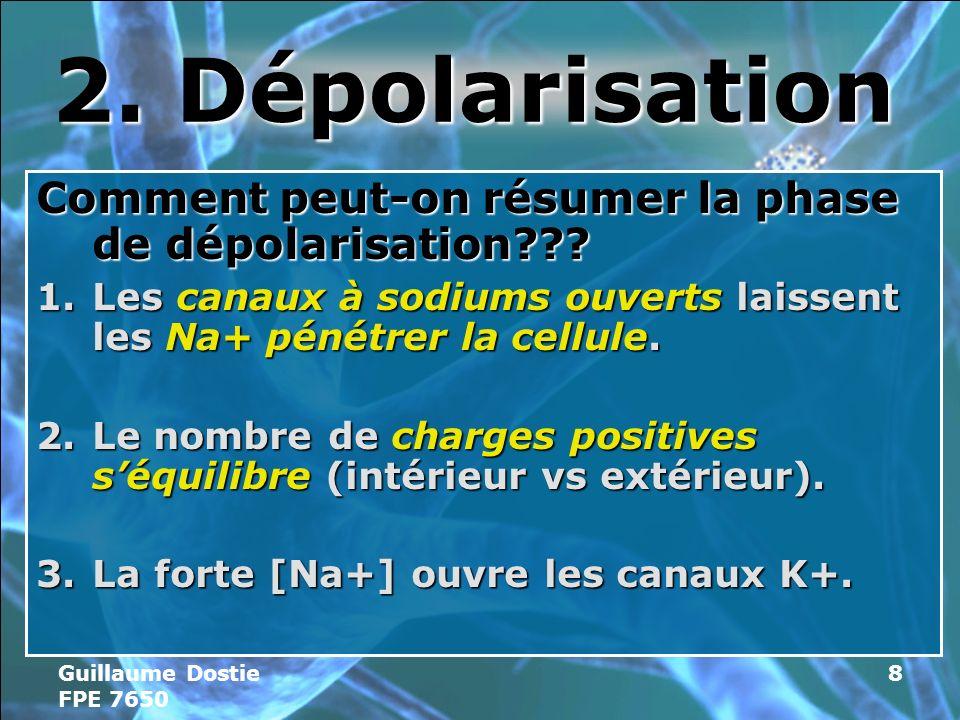 Guillaume Dostie FPE 7650 8 2.Dépolarisation Comment peut-on résumer la phase de dépolarisation??.