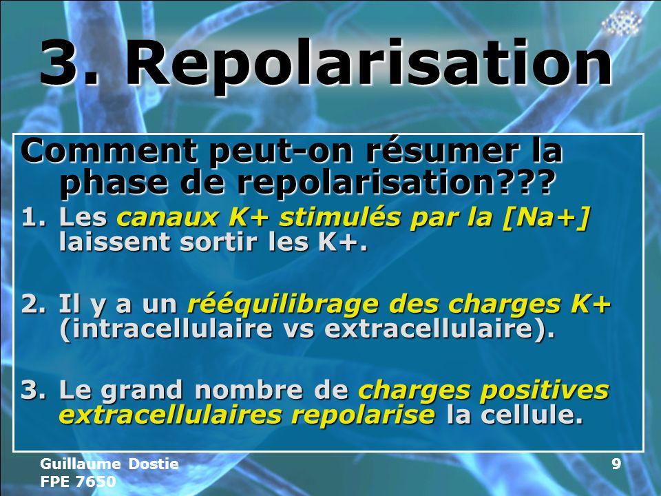Guillaume Dostie FPE 7650 9 3.Repolarisation Comment peut-on résumer la phase de repolarisation??.