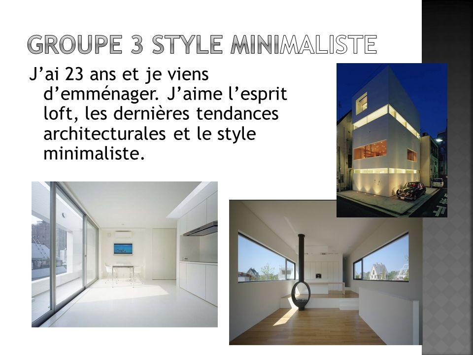 Jai 23 ans et je viens demménager. Jaime lesprit loft, les dernières tendances architecturales et le style minimaliste.