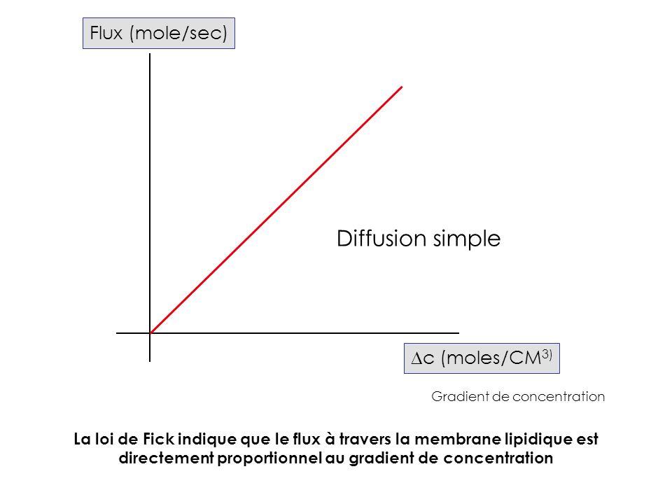 Flux (mole/sec) c (moles/CM 3) Diffusion simple Gradient de concentration La loi de Fick indique que le flux à travers la membrane lipidique est direc