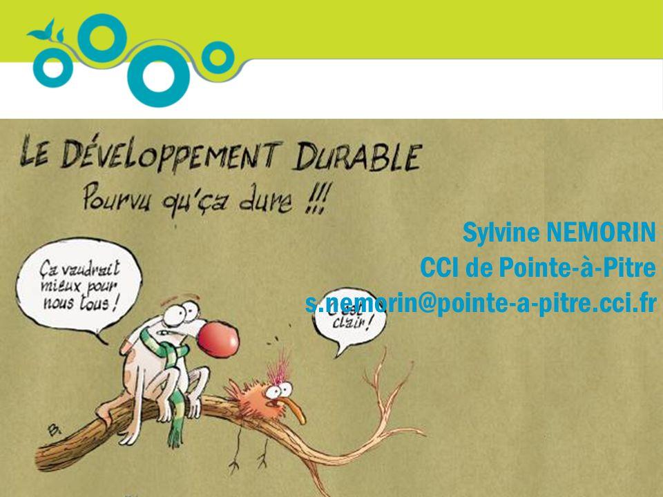 Merci de votre attention Sylvine NEMORIN CCI de Pointe-à-Pitre s.nemorin@pointe-a-pitre.cci.fr