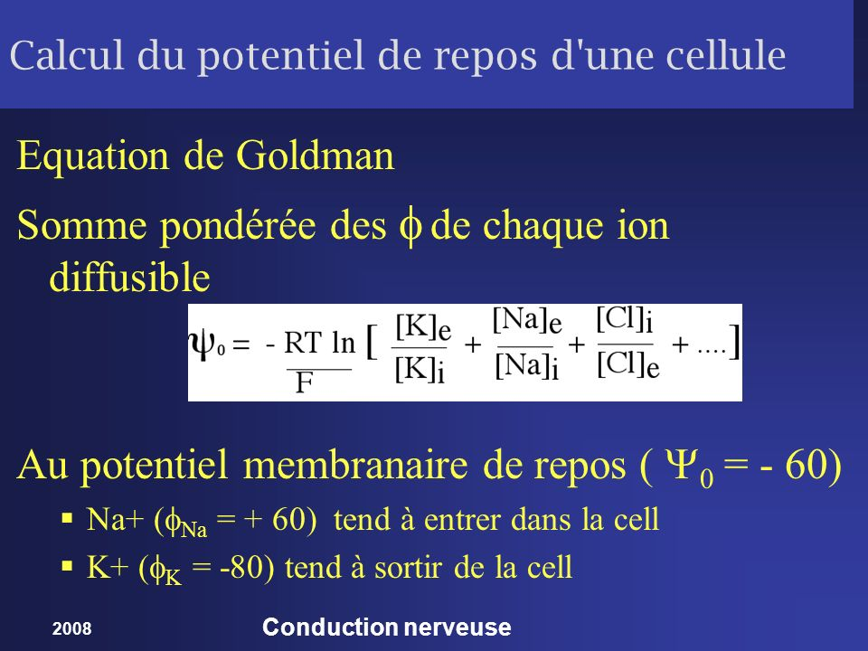 2008 Conduction nerveuse Calcul du potentiel de repos d'une cellule Equation de Goldman Somme pondérée des de chaque ion diffusible Au potentiel membr