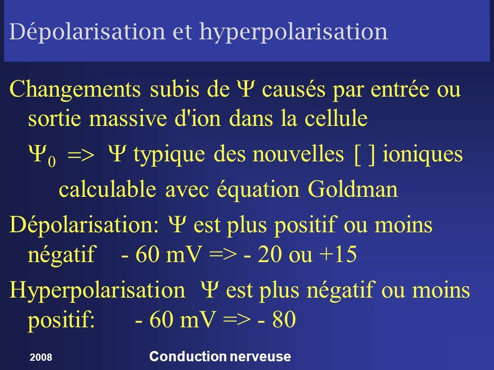 2008 Conduction nerveuse Dépolarisation et hyperpolarisation Changements subis de causés par entrée ou sortie massive d'ion dans la cellule typique de