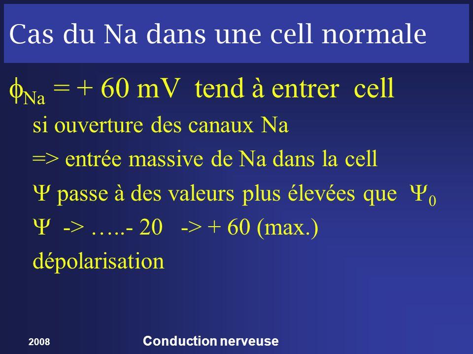2008 Conduction nerveuse Cas du Na dans une cell normale Na = + 60 mV tend à entrer cell si ouverture des canaux Na => entrée massive de Na dans la ce