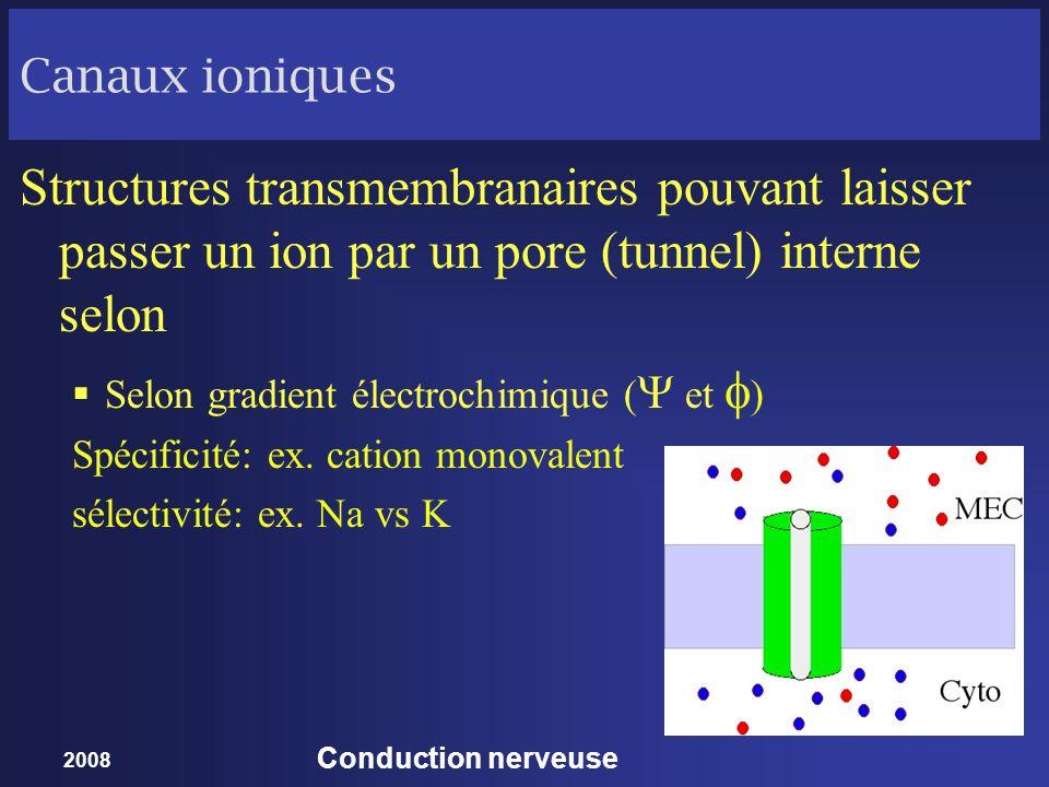 2008 Conduction nerveuse Canaux ioniques Structures transmembranaires pouvant laisser passer un ion par un pore (tunnel) interne selon Selon gradient