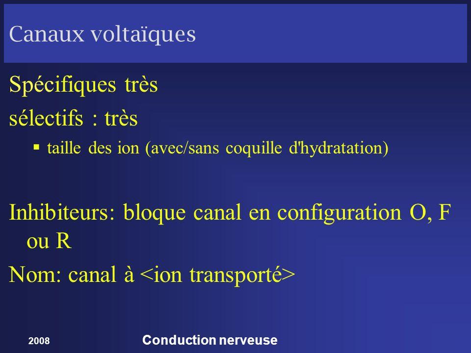 2008 Conduction nerveuse Canaux voltaïques Spécifiques très sélectifs : très taille des ion (avec/sans coquille d'hydratation) Inhibiteurs: bloque can