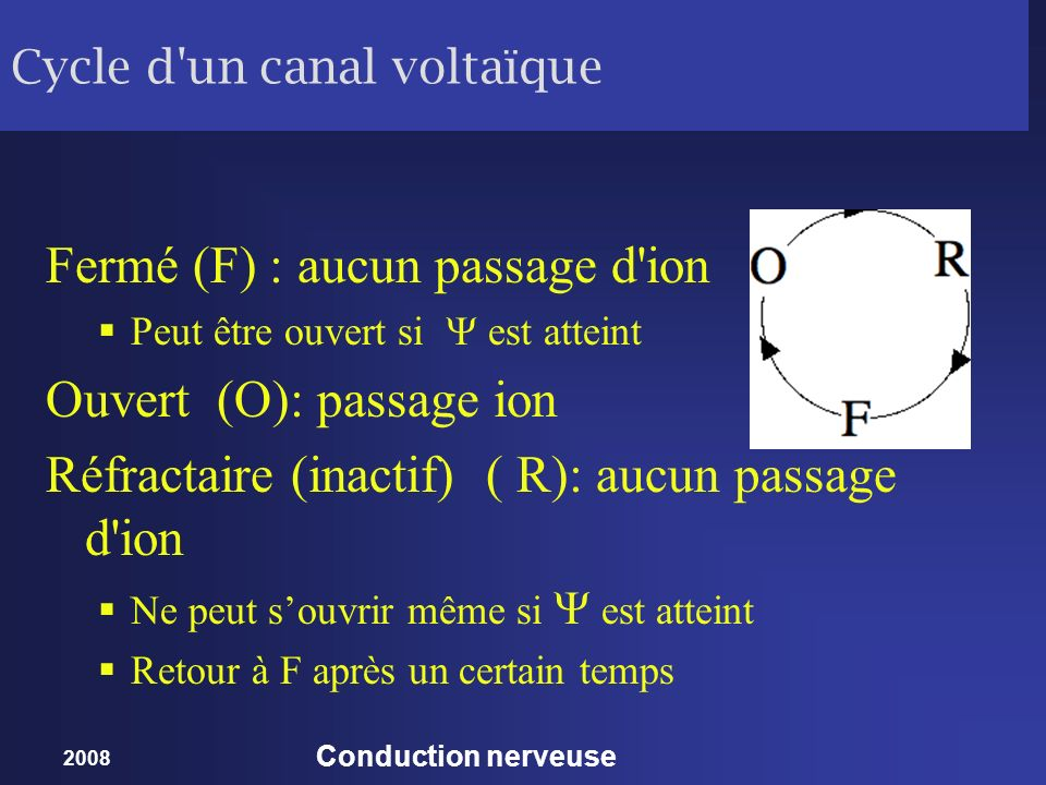 2008 Conduction nerveuse Cycle d'un canal voltaïque Fermé (F) : aucun passage d'ion Peut être ouvert si est atteint Ouvert (O): passage ion Réfractair