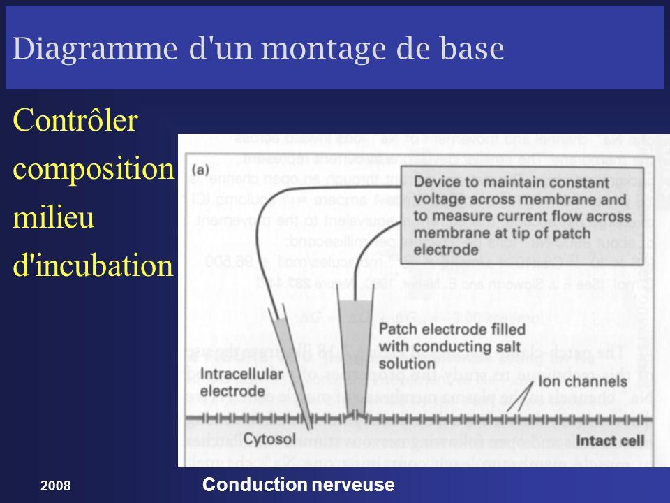 2008 Conduction nerveuse Diagramme d'un montage de base Contrôler composition milieu d'incubation