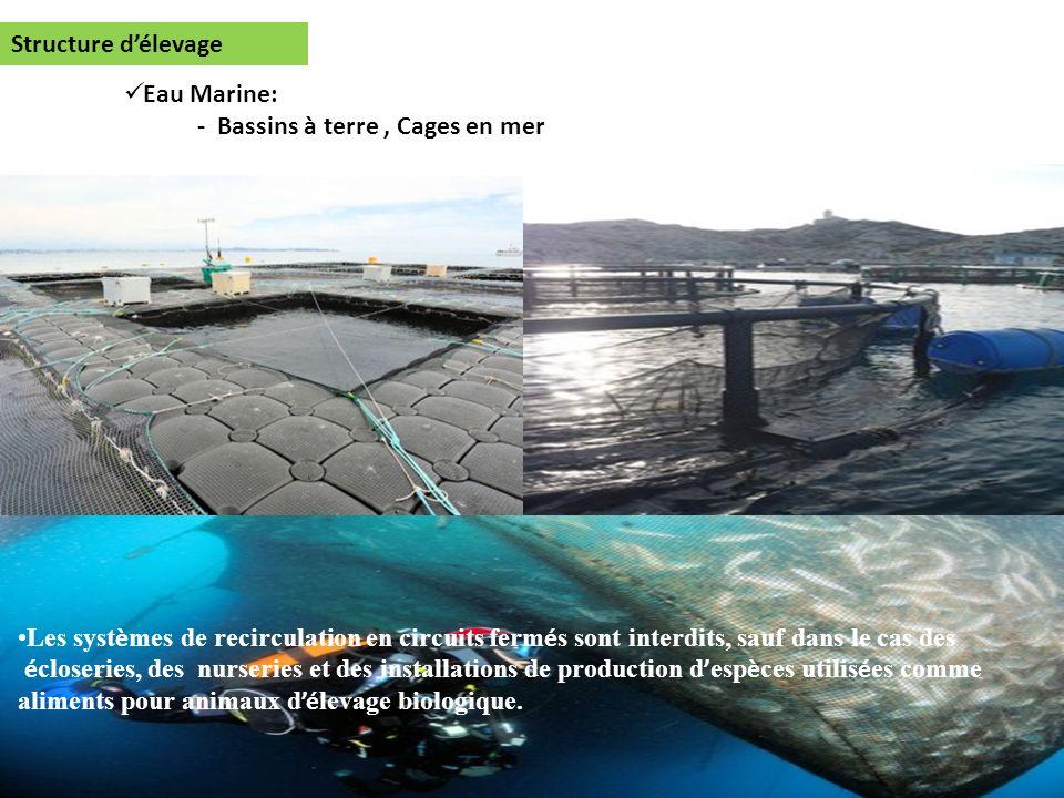 Eau Marine: - Bassins à terre, Cages en mer Structure délevage Les syst è mes de recirculation en circuits ferm é s sont interdits, sauf dans le cas d