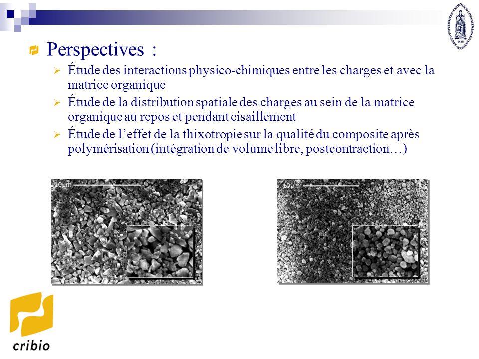 Perspectives : Étude des interactions physico-chimiques entre les charges et avec la matrice organique Étude de la distribution spatiale des charges a