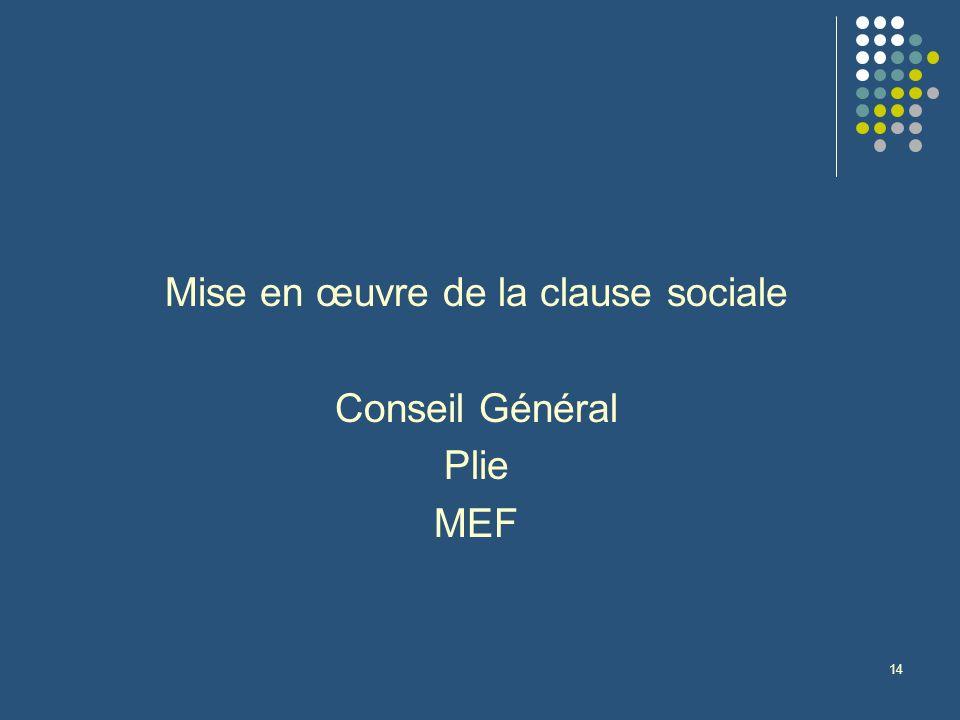 14 Mise en œuvre de la clause sociale Conseil Général Plie MEF