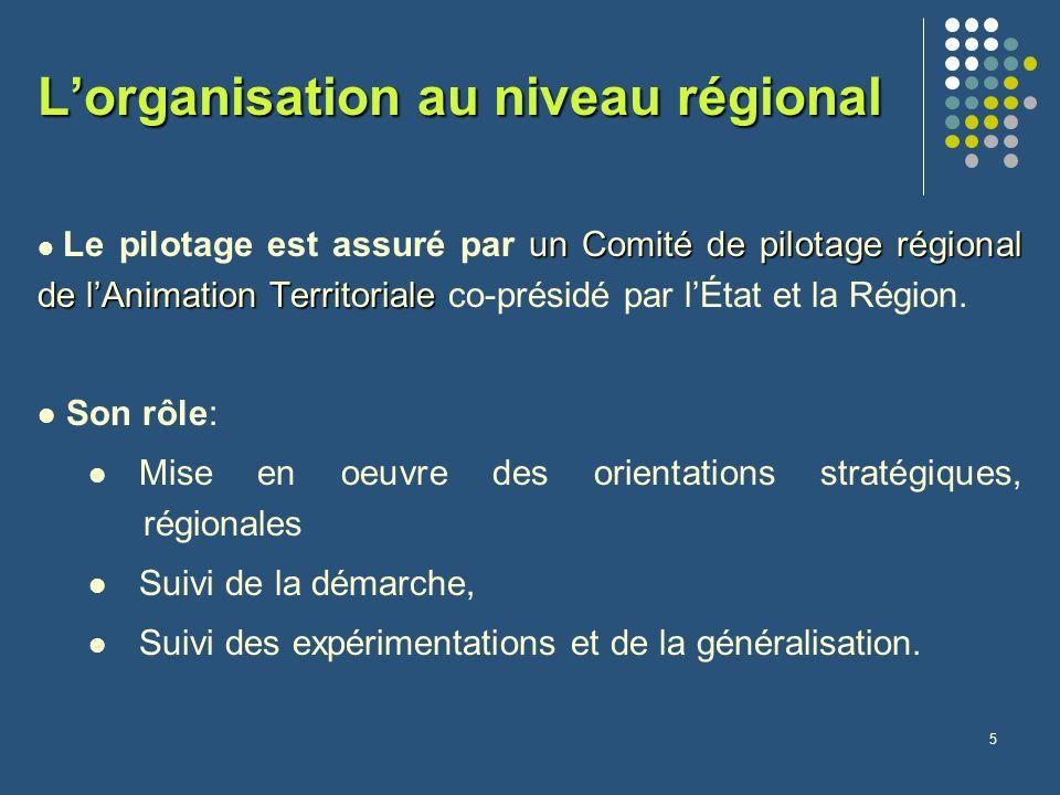 5 Lorganisation au niveau régional unComité de pilotage régional de lAnimation Territoriale Le pilotage est assuré par un Comité de pilotage régional de lAnimation Territoriale co-présidé par lÉtat et la Région.