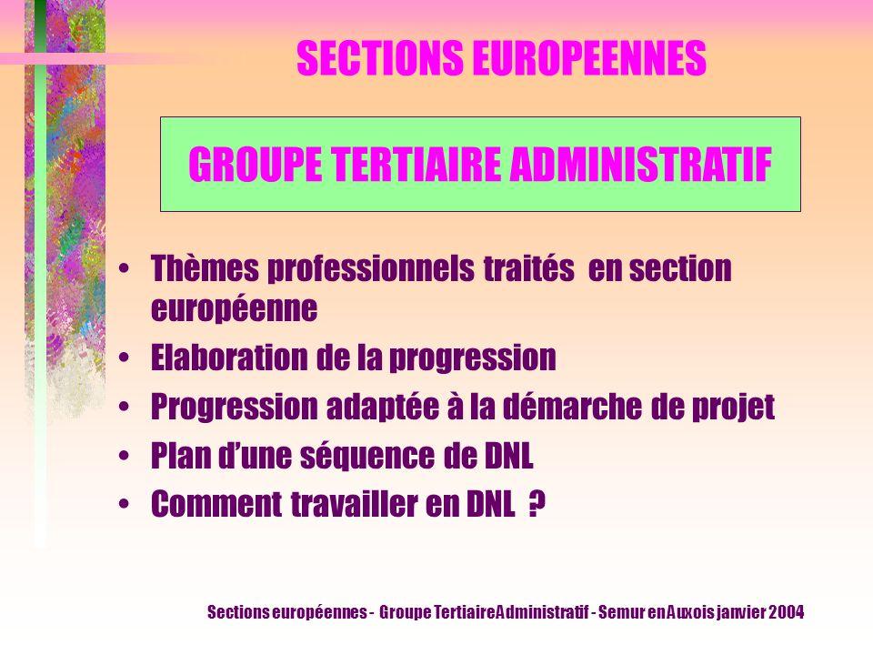 Sections européennes - Groupe Tertiaire Administratif - Semur en Auxois janvier 2004 SECTIONS EUROPEENNES Thèmes professionnels traités en section européenne Elaboration de la progression Progression adaptée à la démarche de projet Plan dune séquence de DNL Comment travailler en DNL .