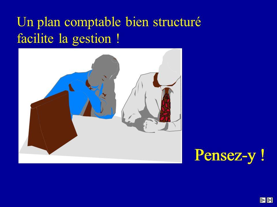Un plan comptable bien structuré facilite la gestion ! Pensez-y !