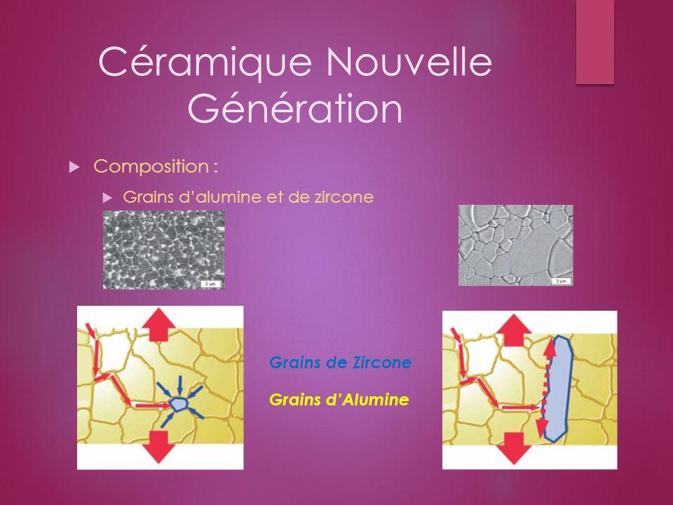 Céramique Nouvelle Génération Composition : Grains dalumine et de zircone Grains de Zircone Grains dAlumine