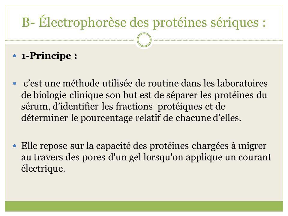 B- Électrophorèse des protéines sériques : 1-Principe : cest une méthode utilisée de routine dans les laboratoires de biologie clinique son but est de séparer les protéines du sérum, didentifier les fractions protéiques et de déterminer le pourcentage relatif de chacune delles.