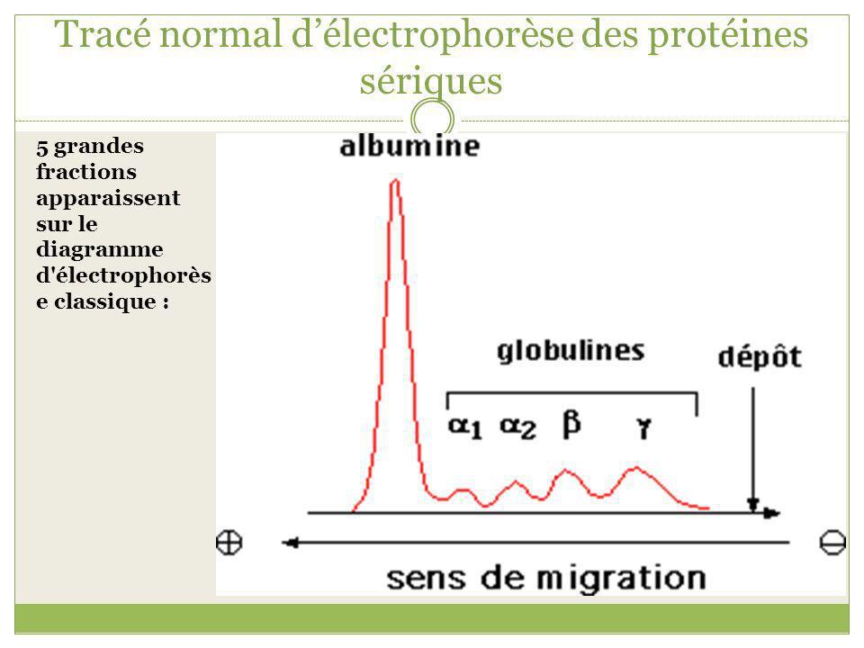 Tracé normal délectrophorèse des protéines sériques 5 grandes fractions apparaissent sur le diagramme d'électrophorès e classique :