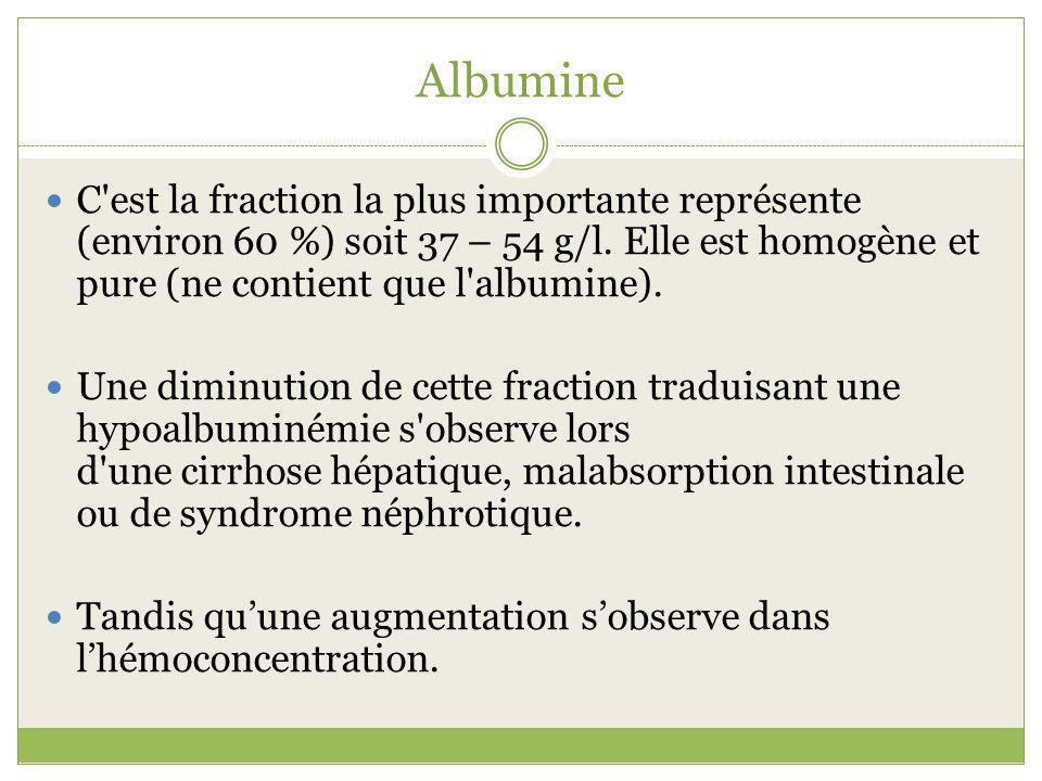 Albumine C'est la fraction la plus importante représente (environ 60 %) soit 37 – 54 g/l. Elle est homogène et pure (ne contient que l'albumine). Une