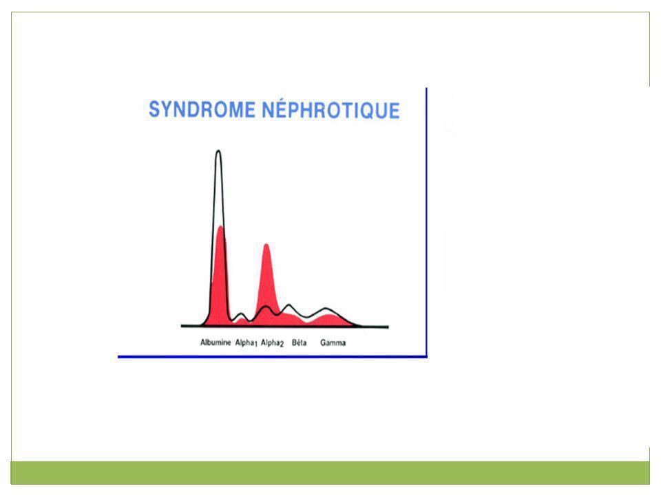 α 1 -globulines Cette fraction représentant environ 3 % comprend notamment l α 1 -antitrypsine (90%) et l orosomucoïde (également appelé α 1 - glycoprotéine acide).α 1 -antitrypsineorosomucoïde La diminution de cette fraction peut être en rapport avec une dénutrition ou une insuffisance hépatocellulaire.