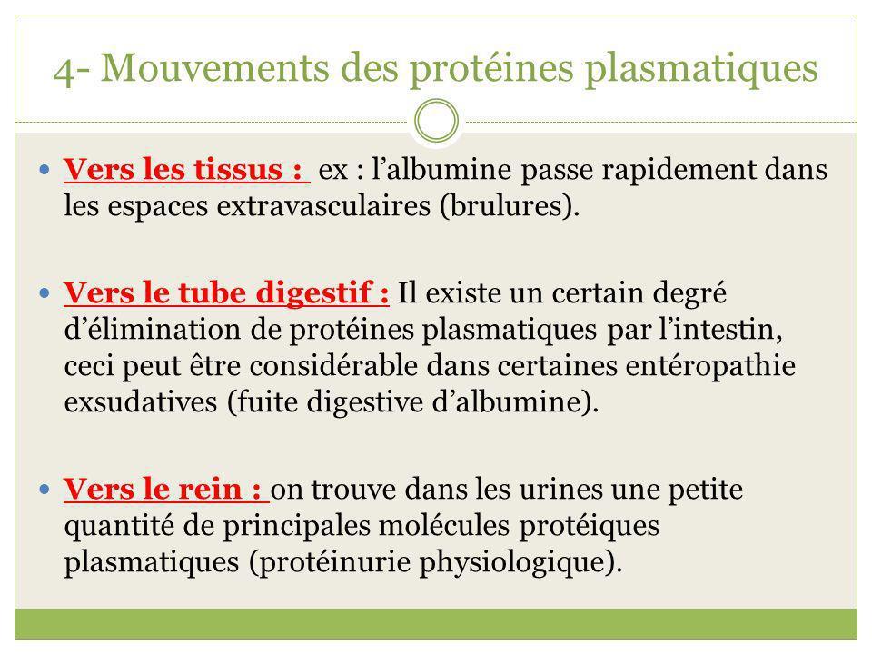 4- Mouvements des protéines plasmatiques Vers les tissus : ex : lalbumine passe rapidement dans les espaces extravasculaires (brulures). Vers le tube