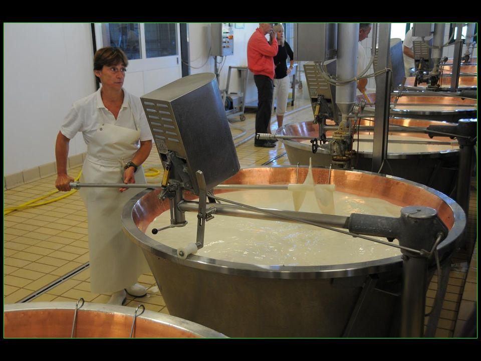 Les origines du Parmesan remontent au XII me siècle