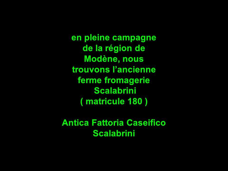 en pleine campagne de la région de Modène, nous trouvons lancienne ferme fromagerie Scalabrini ( matricule 180 ) Antica Fattoria Caseifico Scalabrini