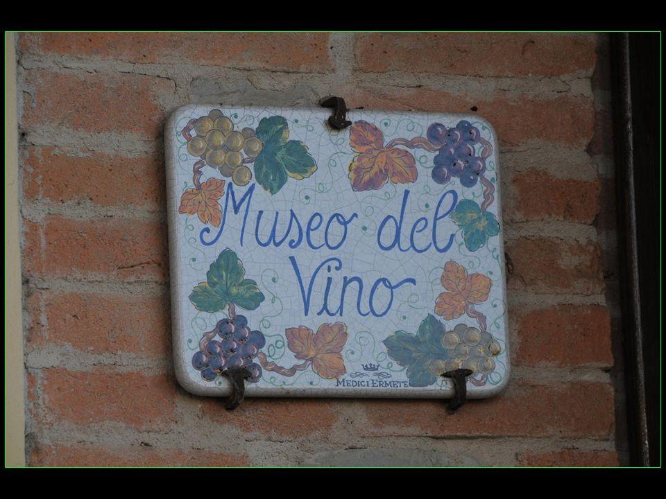 Visite du petit musée du vin