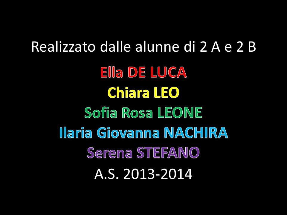 Realizzato dalle alunne di 2 A e 2 B A.S. 2013-2014