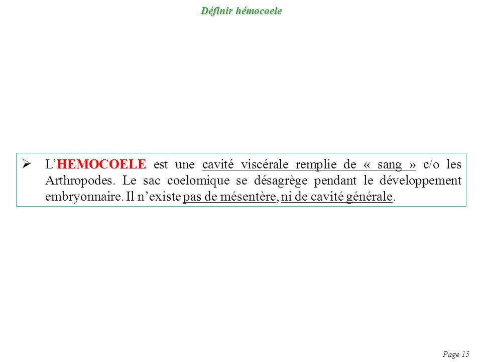 Définir hémocoele Page 15 HEMOCOELE LHEMOCOELE est une cavité viscérale remplie de « sang » c/o les Arthropodes. Le sac coelomique se désagrège pendan