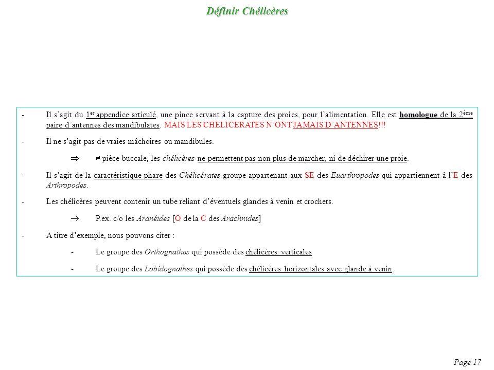 Définir Chélicères Page 17 homologue -Il sagit du 1 er appendice articulé, une pince servant à la capture des proies, pour lalimentation.