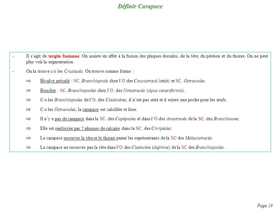 Définir Carapace Page 19 tergite fusionné -Il sagit de tergite fusionné. On assiste en effet à la fusion des plaques dorsales, de la tête, du péréion