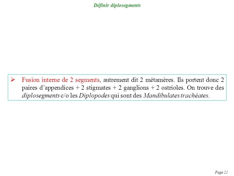 Définir diplosegments Page 21 Fusion interne de 2 segments, autrement dit 2 métamères. Ils portent donc 2 paires dappendices + 2 stigmates + 2 ganglio