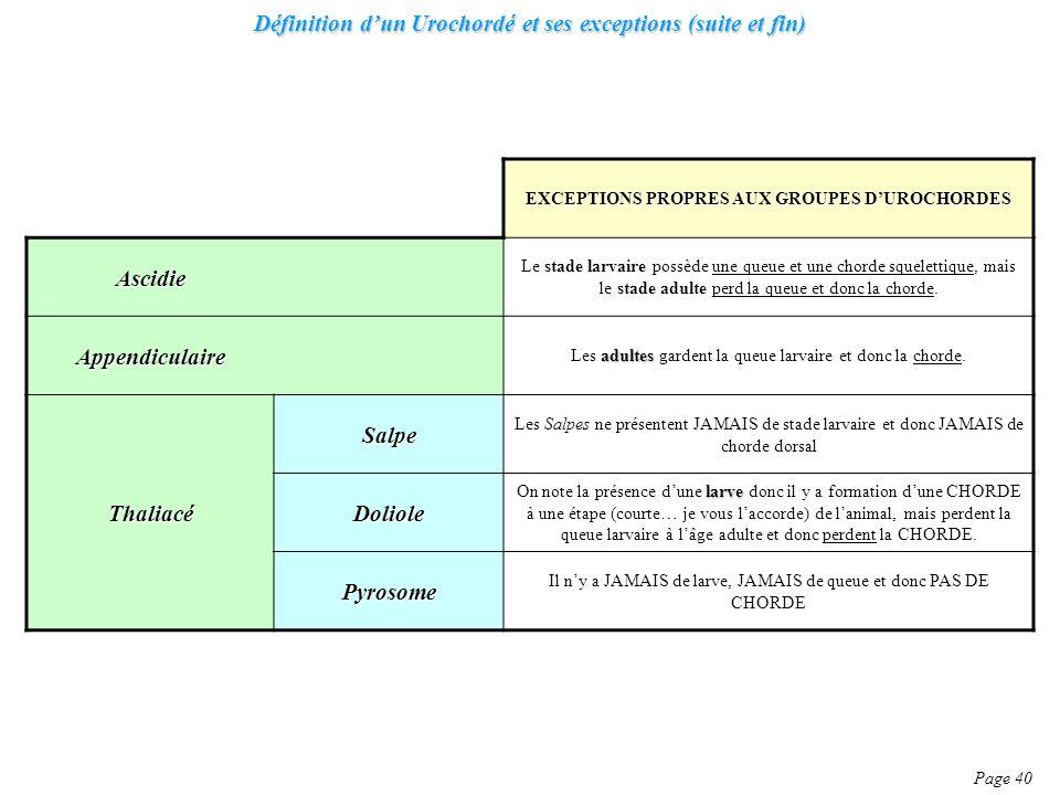 Définition dun Urochordé et ses exceptions (suite et fin) Page 40 EXCEPTIONS PROPRES AUX GROUPES DUROCHORDES Ascidie Le stade larvaire possède une que