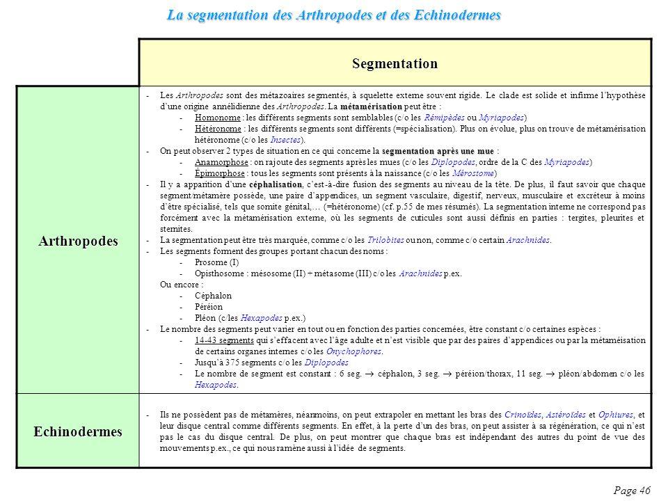 La segmentation des Arthropodes et des Echinodermes Page 46 Segmentation Arthropodes métamérisation -Les Arthropodes sont des métazoaires segmentés, à