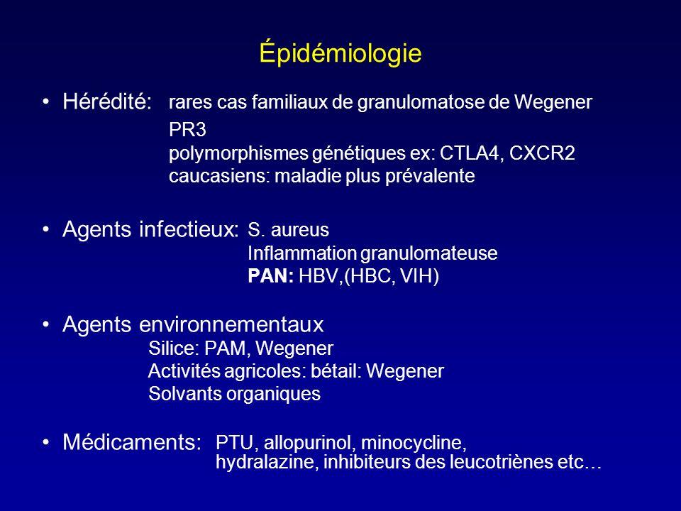 Épidémiologie Hérédité: rares cas familiaux de granulomatose de Wegener PR3 polymorphismes génétiques ex: CTLA4, CXCR2 caucasiens: maladie plus prévalente Agents infectieux: S.