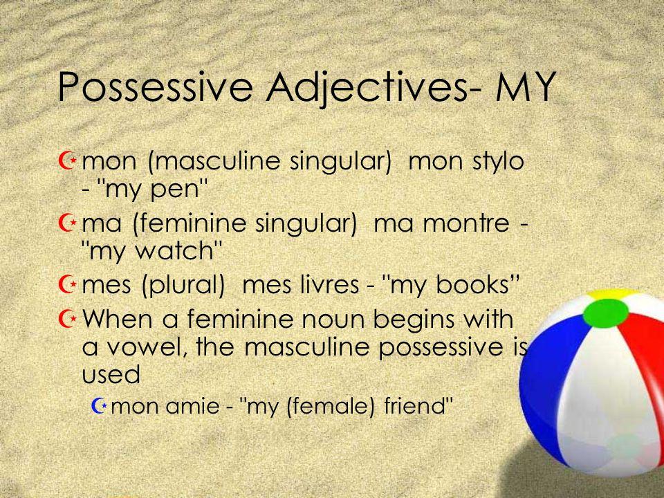 Possessive Adjectives- MY Zmon (masculine singular) mon stylo - my pen Zma (feminine singular) ma montre - my watch Zmes (plural) mes livres - my books ZWhen a feminine noun begins with a vowel, the masculine possessive is used Zmon amie - my (female) friend