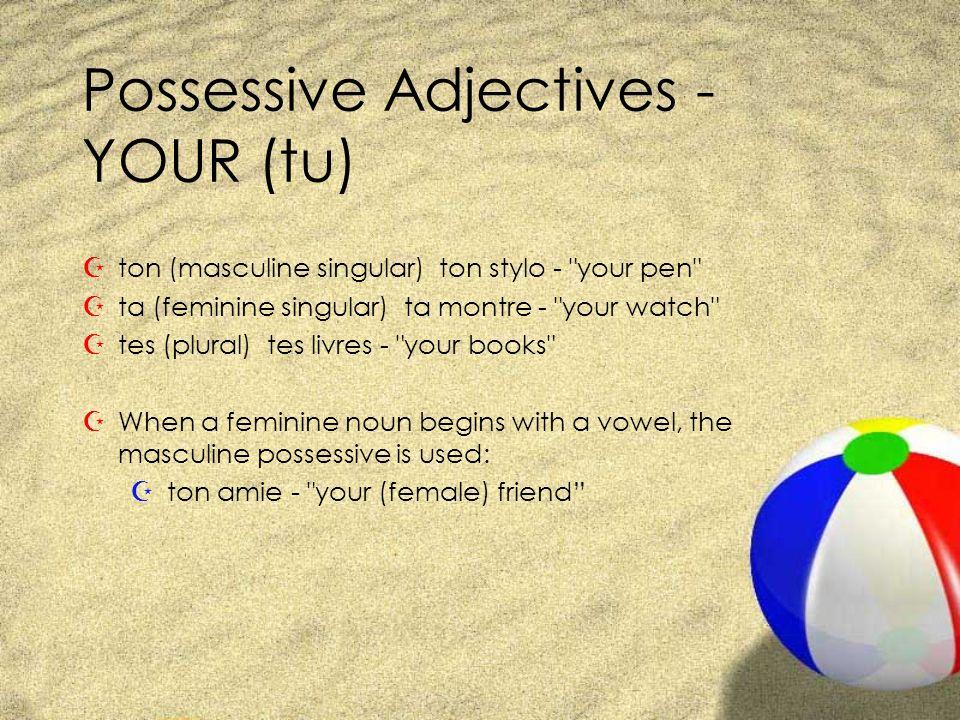 Possessive Adjectives - YOUR (tu) Zton (masculine singular) ton stylo - your pen Zta (feminine singular) ta montre - your watch Ztes (plural) tes livres - your books ZWhen a feminine noun begins with a vowel, the masculine possessive is used: Z ton amie - your (female) friend