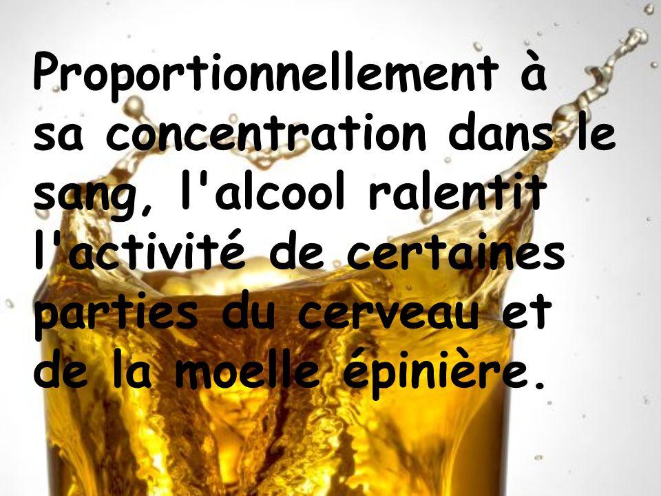 Proportionnellement à sa concentration dans le sang, l'alcool ralentit l'activité de certaines parties du cerveau et de la moelle épinière.