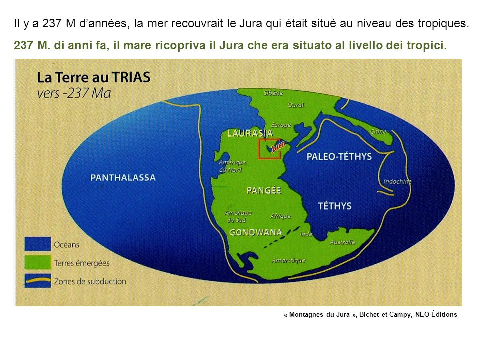 Il y a 237 M dannées, la mer recouvrait le Jura qui était situé au niveau des tropiques. 237 M. di anni fa, il mare ricopriva il Jura che era situato