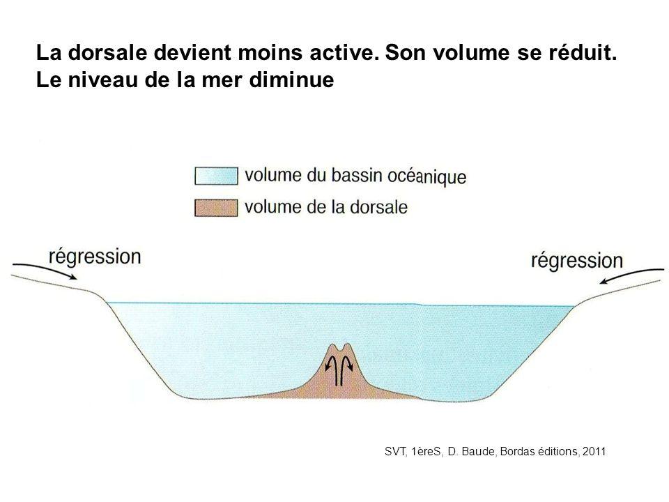 SVT, 1èreS, D. Baude, Bordas éditions, 2011 La dorsale devient moins active. Son volume se réduit. Le niveau de la mer diminue
