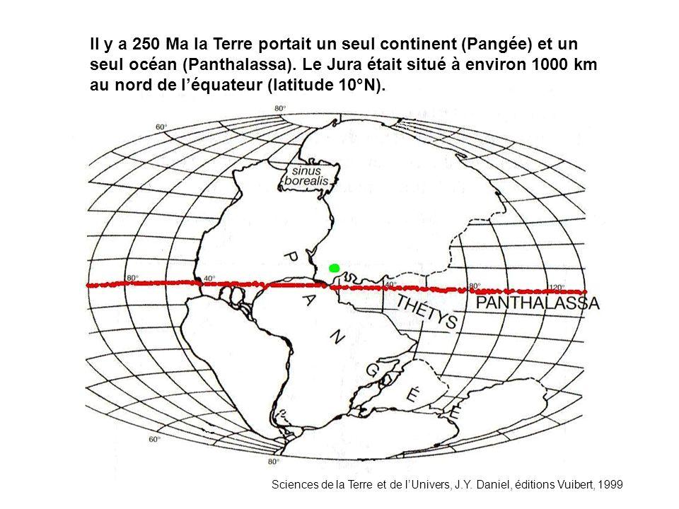 Sciences de la Terre et de lUnivers, J.Y. Daniel, éditions Vuibert, 1999 Il y a 250 Ma la Terre portait un seul continent (Pangée) et un seul océan (P