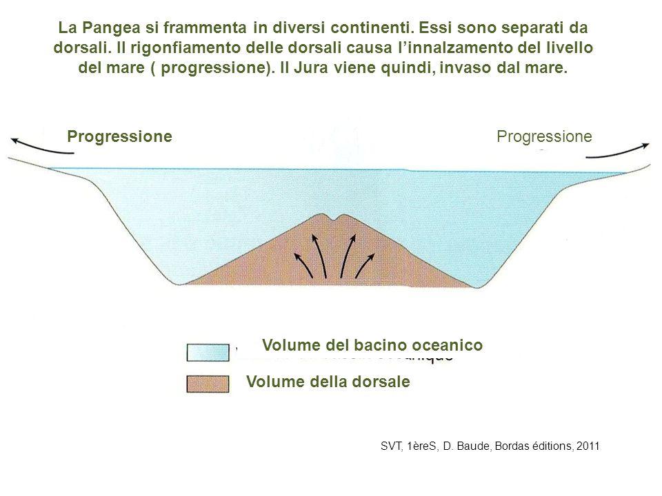 SVT, 1èreS, D. Baude, Bordas éditions, 2011 La Pangea si frammenta in diversi continenti. Essi sono separati da dorsali. Il rigonfiamento delle dorsal