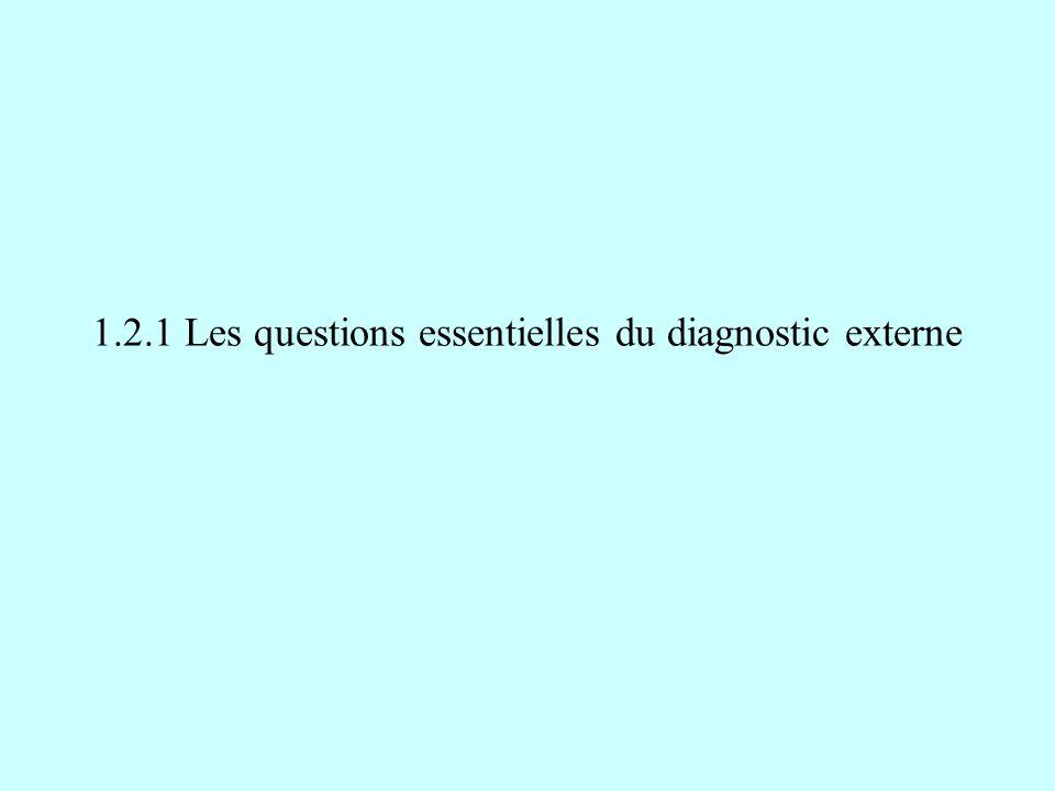 1.2.1 Les questions essentielles du diagnostic externe