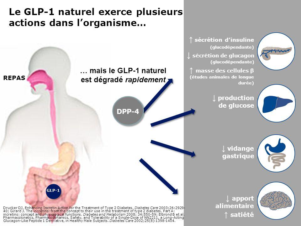 Les inhibiteurs de la DPP-4 PHYSIOLOGIQUES Les inhibiteurs de la DPP-4 empêchent la dégradation du GLP-1 naturel … et procurent des taux PHYSIOLOGIQUES de GLP-1 Les agonistes du récepteur du GLP-1 Les agonistes du récepteur du GLP-1 rehaussent laction du GLP-1 PHARMACOLOGIQUES … et procurent des taux PHARMACOLOGIQUES de GLP-1 production de glucose vidange gastrique apport alimentaire satiété sécrétion de glucagon (glucodépendante) sécrétion dinsuline (glucodépendante) masse des cellules β (études animales de longue durée) GLP-1 DPP-4 INHIBITEUR DE LA DPP-4 Agoniste du récepteur du GLP-1 Combettes MM et al.